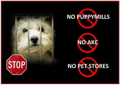 Cotons de Tulear Say NO to AKC
